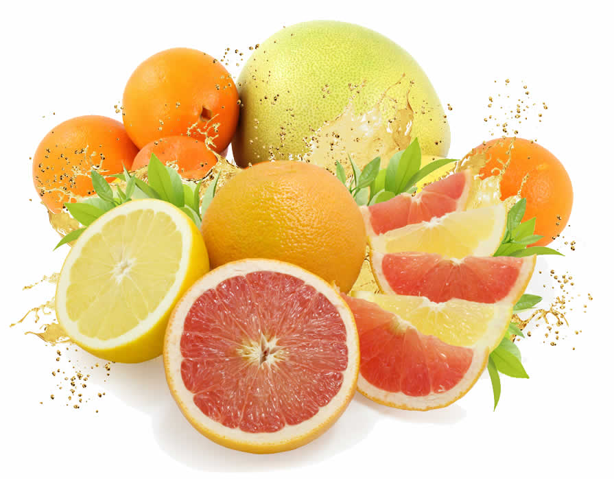 Atkins Grapefruit Diet