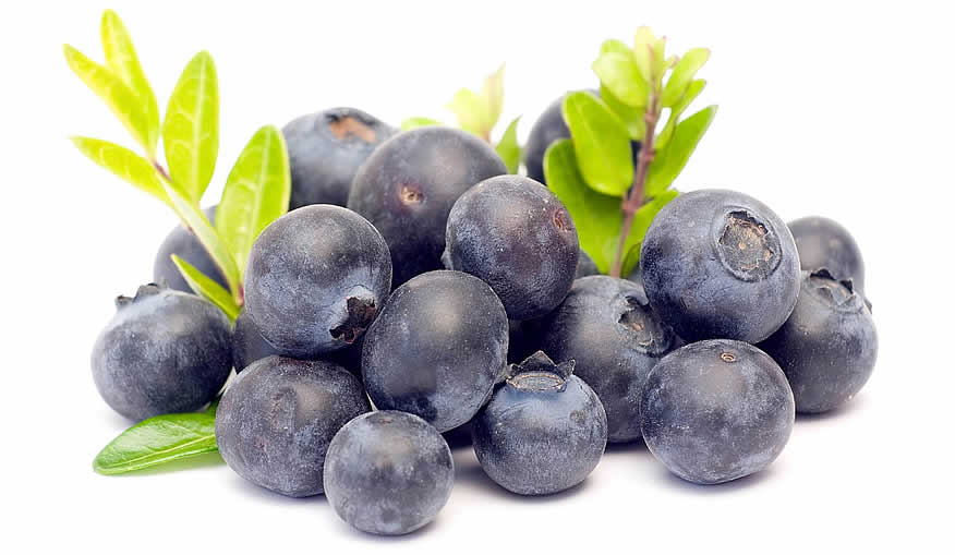 acai berry scam or real